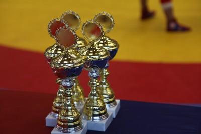 Завершилось Первенство Москвы по самбо среди юношей и девушек до 17-18 лет